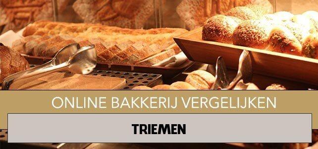 online bakkerij Triemen